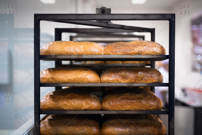 Fresh baked loaves of sesame seed bread cooling on a rack in a bakery