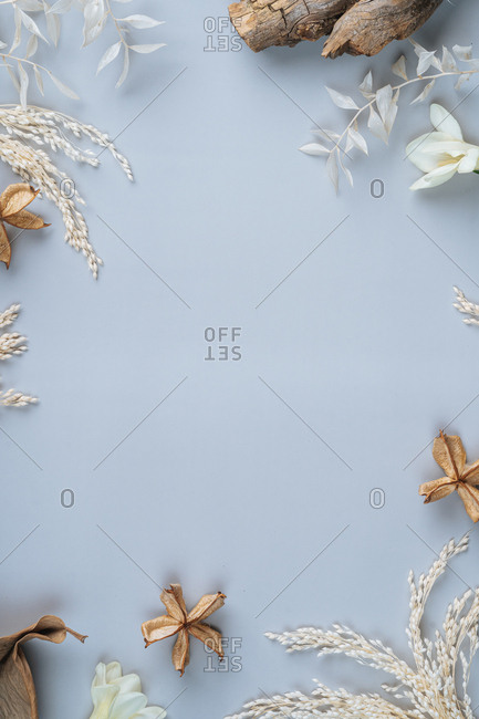Light blue background surrounded with fall leaves, flowers and wood