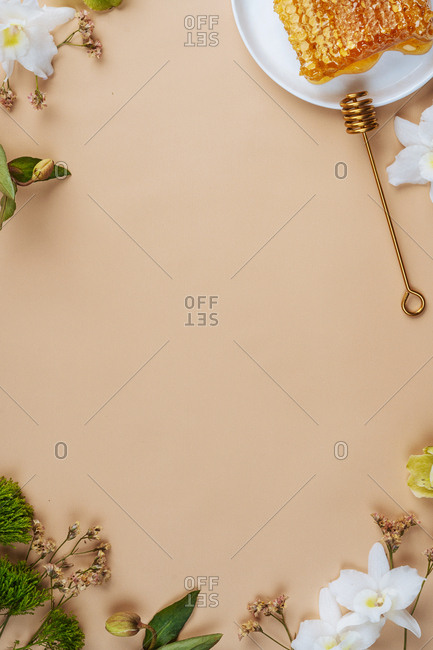 Peach colored background surrounded with flowers and a honeycomb