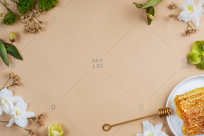 Light peach colored background surrounded with flowers and a honeycomb