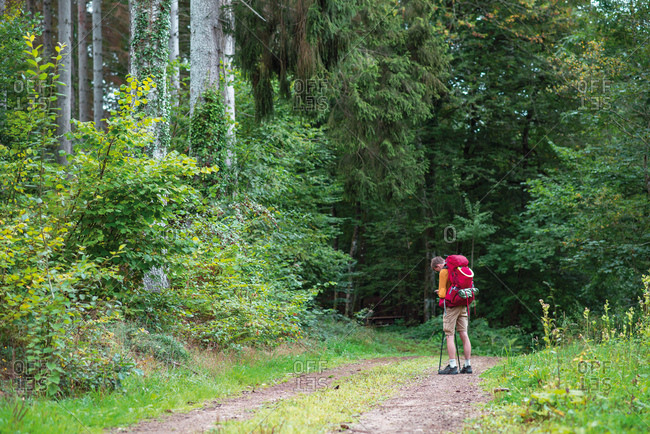 Backpacker stopped on a trail while hiking in the forest