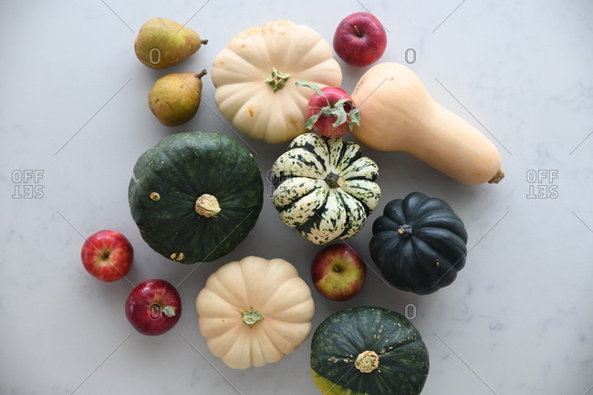 Variety of fall fruits and gourds