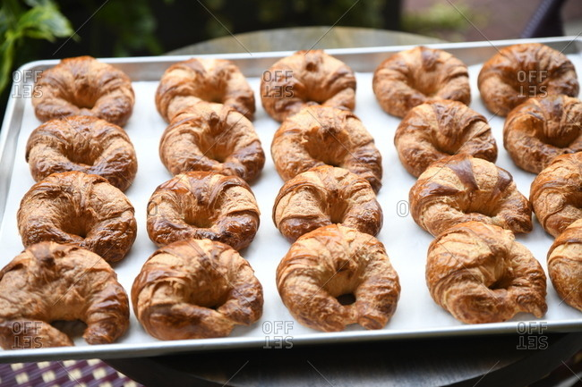 Fresh baked croissants on a baking pan