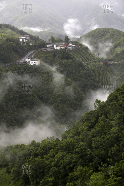 The rain in the shennongjia