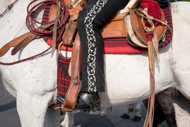 A mariachi rides a horse in Garibaldi Square, Ciudad de Mexico, Mexico