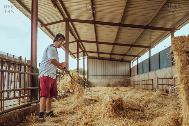 Farmer working with straw on a farm