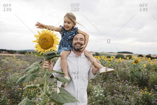 Happy man carrying daughter in a sunflower field