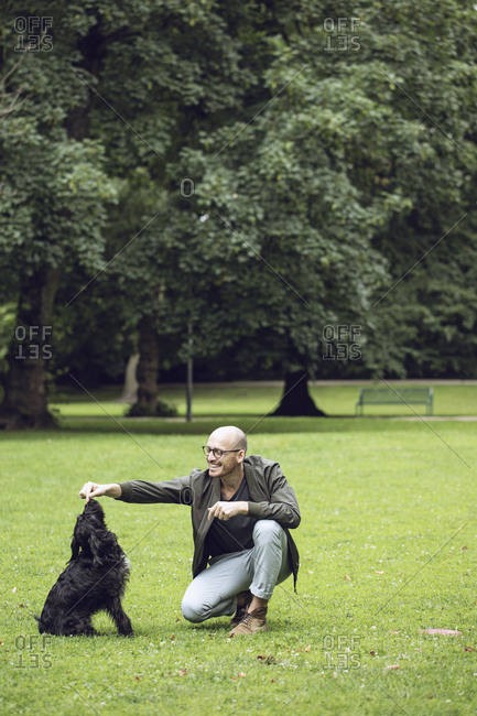 Man and his dog in a park