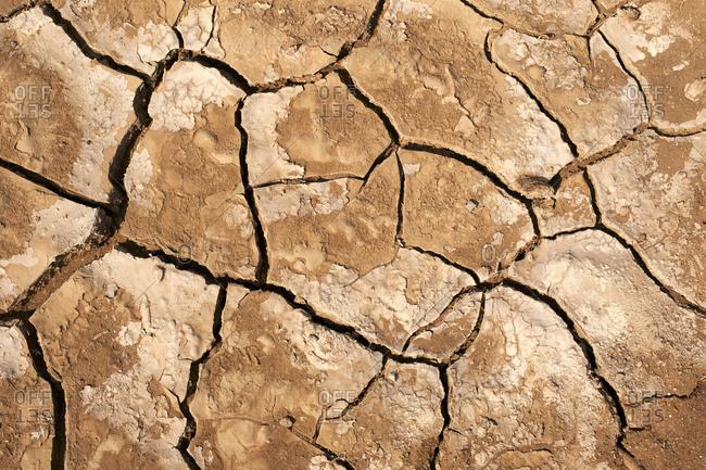 Cracked dry ground- Namib Province- Angola.