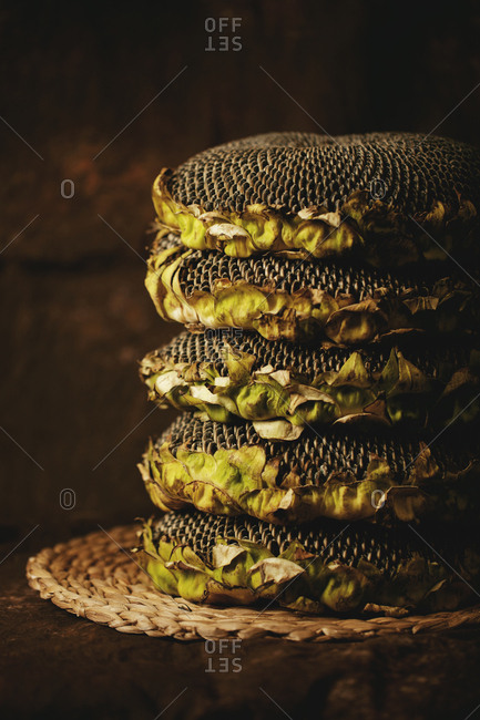 A stack of dried sunflowers.