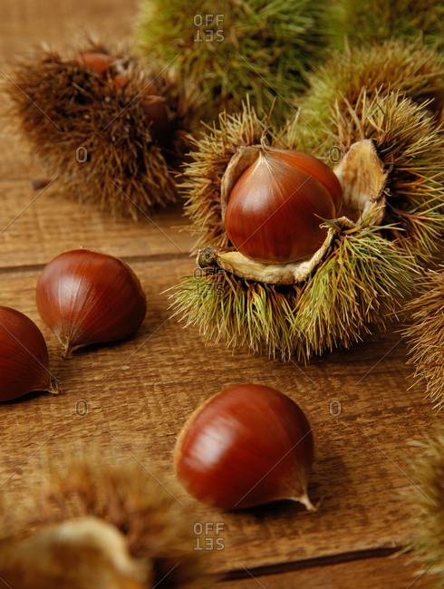 Freshly opened acorns on a wooden table.