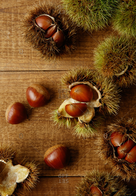 Fresh acorns on a wooden shell.