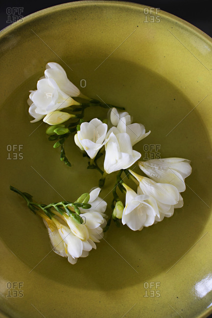 White flowers in a bowl of water