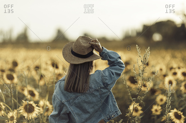 Rear view of young woman in denim jacket standing in a sunflower field