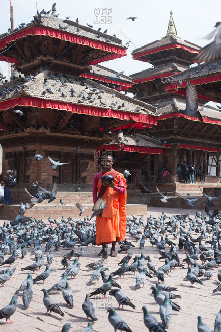 Kathmandu, Nepal, Southeast Asia - September 27, 2018: Young religious monk man standing surrounded by birds with offering