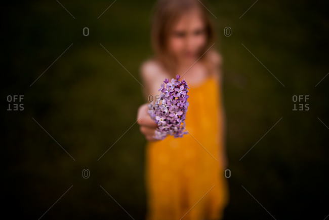 9 year old girl holding lilacs with blurred out background