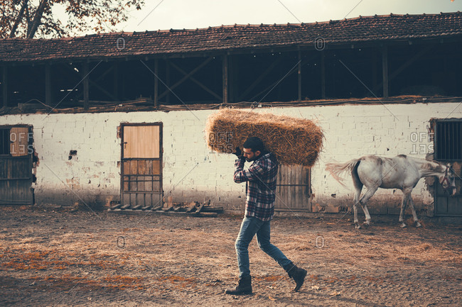 Handsome horse-keeper carrying hay bales