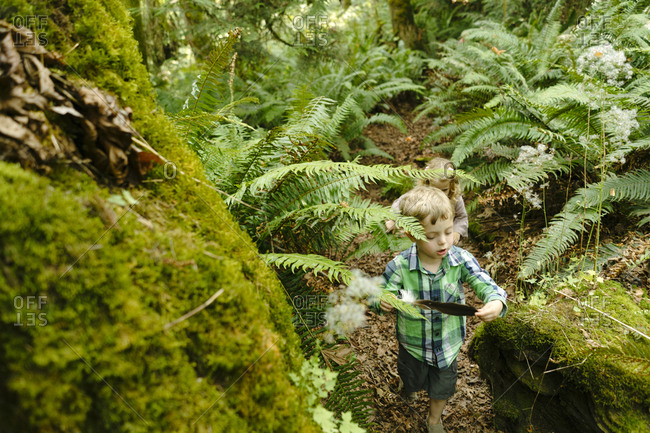View from above of a young boy hiking through the trees with a feather