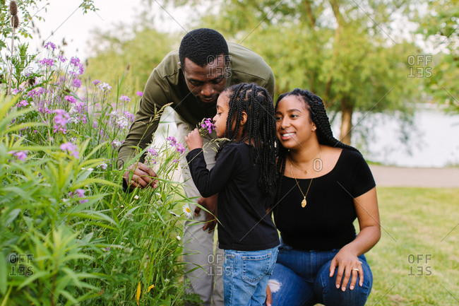 A young girl smells a wild flower with her parents