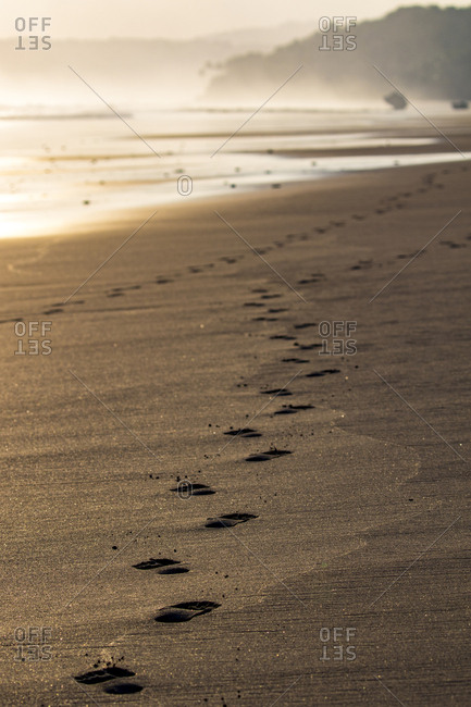Footsteps lead off into the distance on a tropical beach