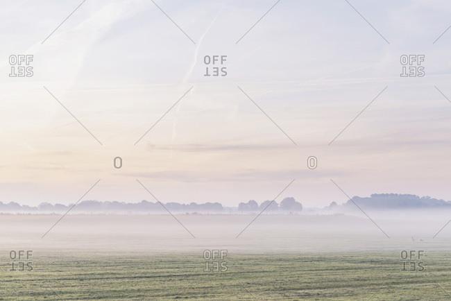 Hazy sunrise over farmland in late summer