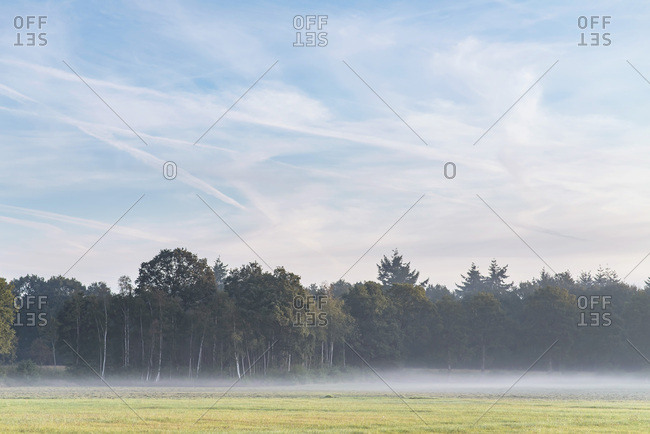 Foggy sunrise over field and trees in late summer