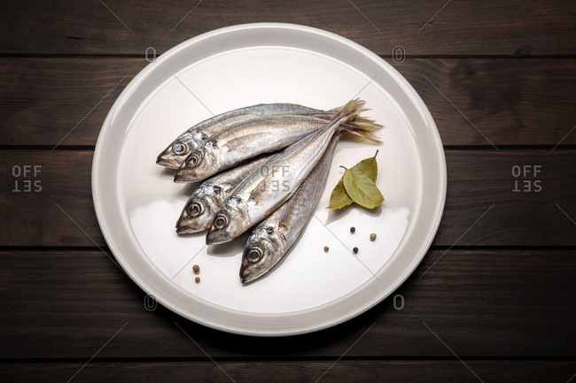 Fresh mackerel fish on plate ready to cook. raw seafood