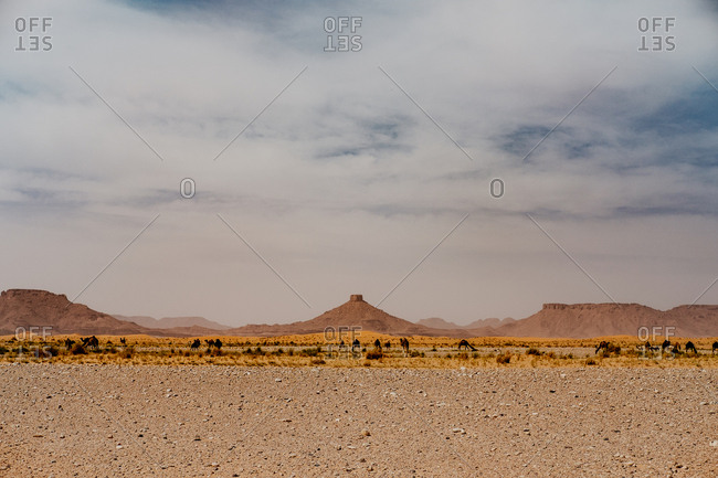 Cloudy sundown sky over hills and rocks in arid desert in evening in morocco