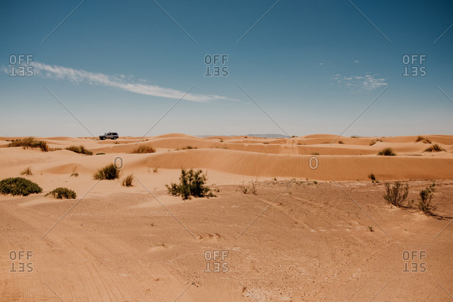 Trails from vehicle wheels on sandy dunes in arid desert on sunny day in morocco