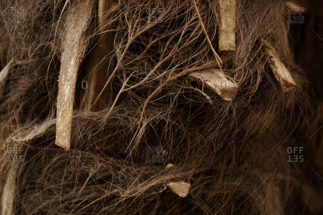 Nest of wooden branches and matted brown wool piled together on tree