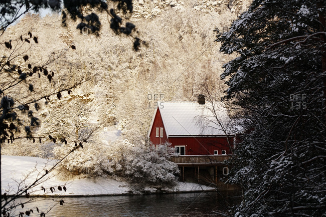 Cozy red colored country house on shore of remote river surrounded with white frosty trees in winter woods