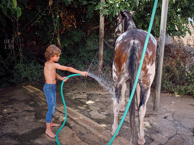 Side view of barefoot boy hosing down stallion with fresh water on farm terrace