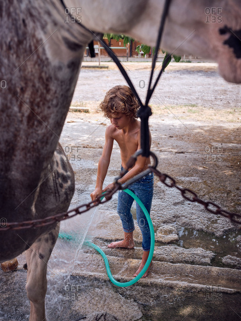 Barefoot boy hosing down stallion with fresh water on farm terrace
