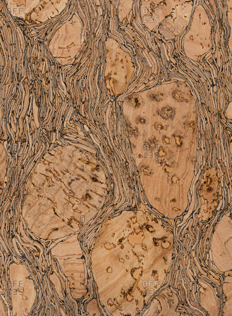 Wood cork surface