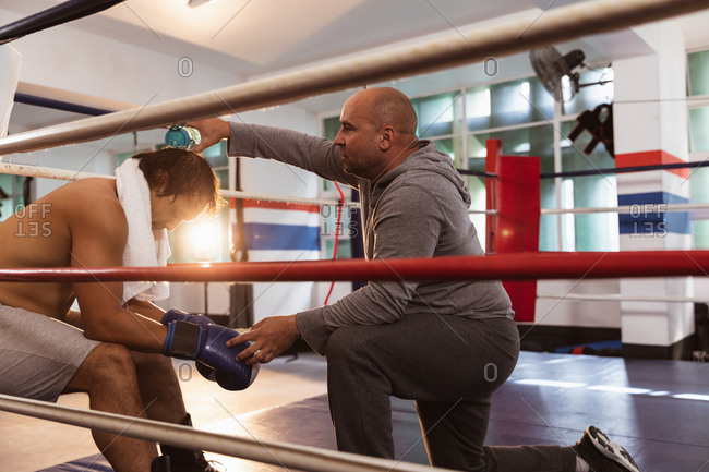 Side view close up of a young mixed race male boxer sitting in a boxing ring while a middle aged Caucasian male trainer is pouring water on his head
