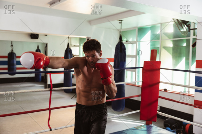 Front view of a young Caucasian male boxer in a boxing gym punching in a boxing ring