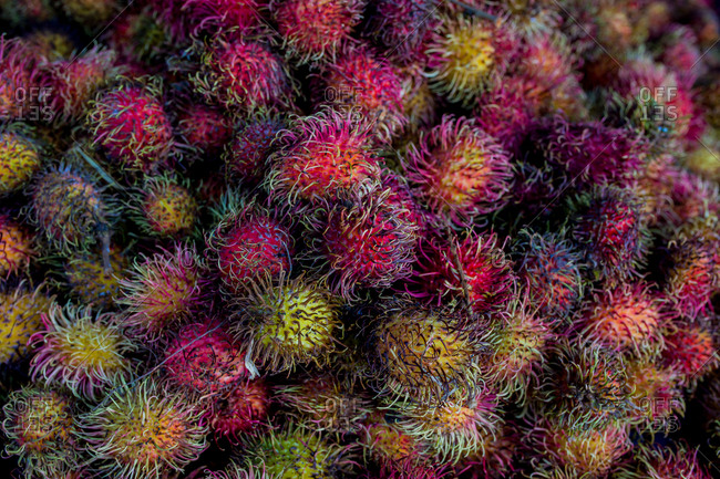 Close up of a large pile of rambutans