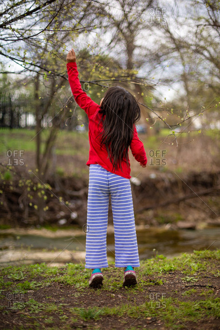 Little girl reaching up at a tree branch in spring