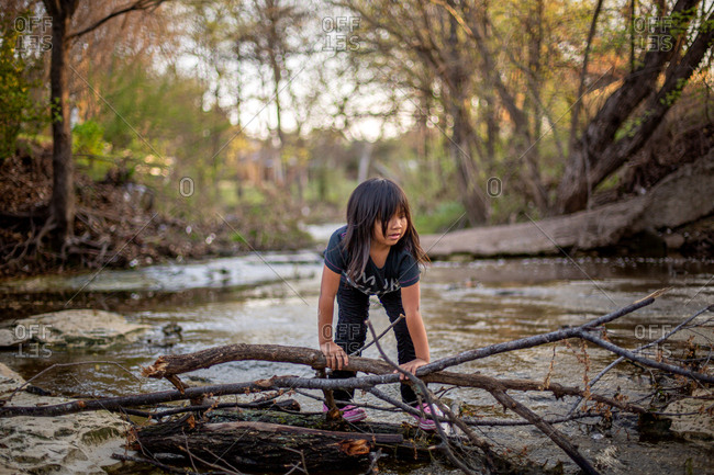 Little girl climbing on tree branches in a creek