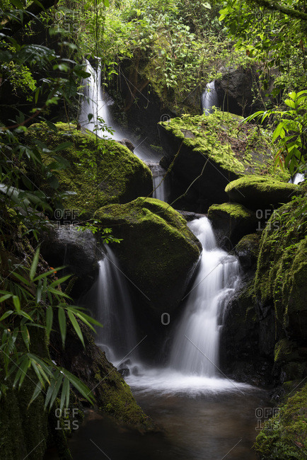 Beautiful landscape of green rainforest waterfalls and river