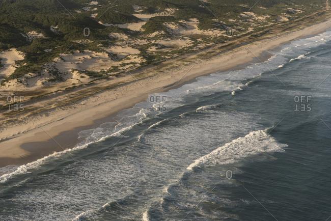 Aerial view to beautiful restinga vegetation wild beach and ocean