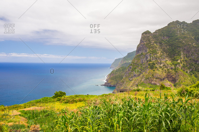 Overlooking the island of madeira