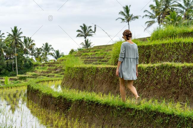 Young lady enjoying the walk through balinese rice fields