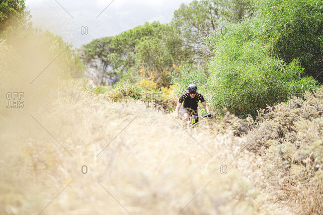 Pulled back view of mountain bike cyclist in forest