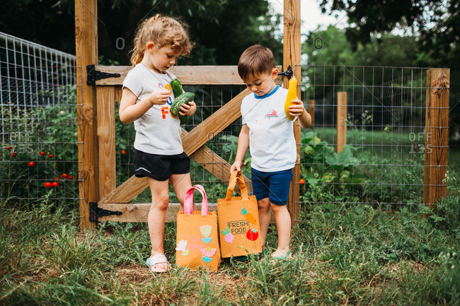 Young boy and girl put fresh picked veggies from home garden in bags