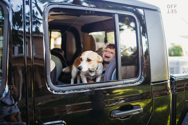 Corgi looking out truck window sitting on young girl in back seat