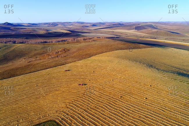 Aerial golden fields of autumn