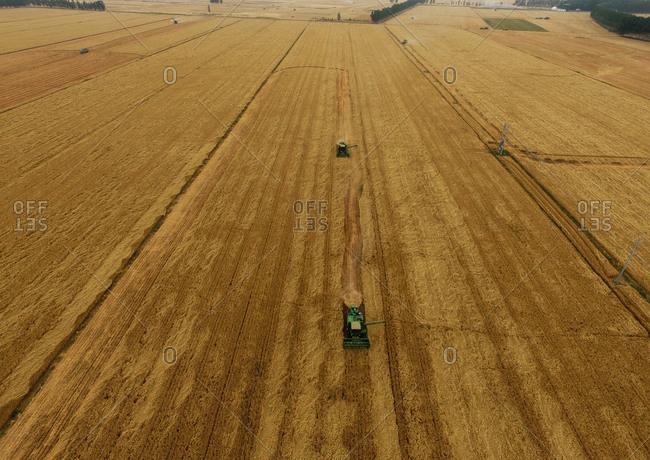Aerial wheat harvest