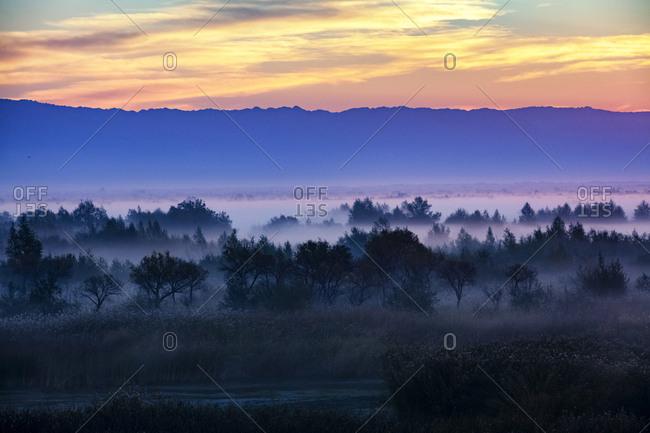 Xinjiang burqin wetland landscape
