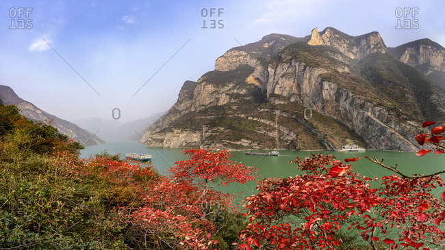 Chongqing Yangtze river three gorges maple leaves